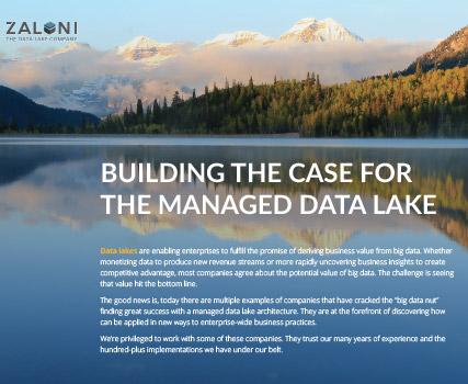 View the Zaloni project