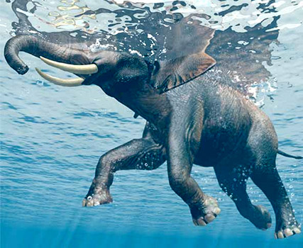 elephant in data lake