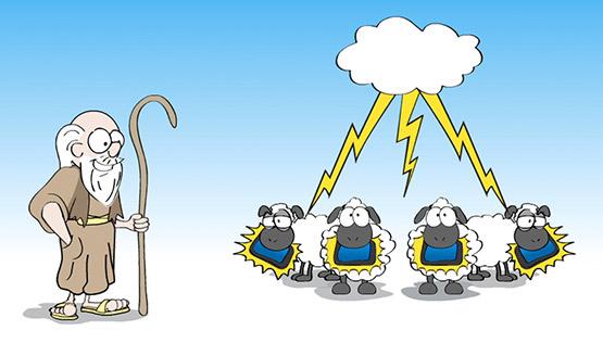 10 Commandments sheep