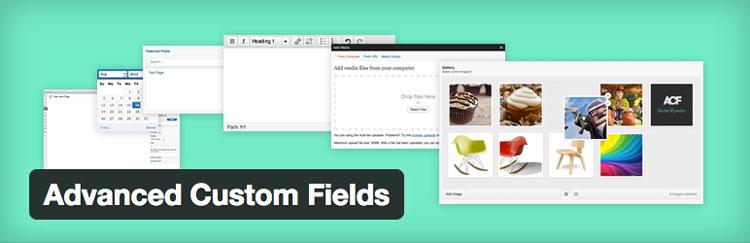 advanced custom fields thumb