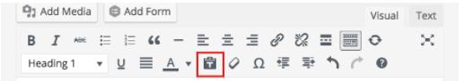 """wordpress """"paste as text"""" button"""