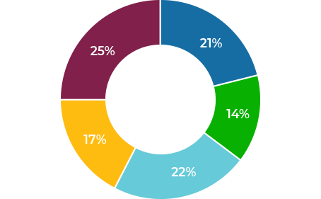 keen pie chart